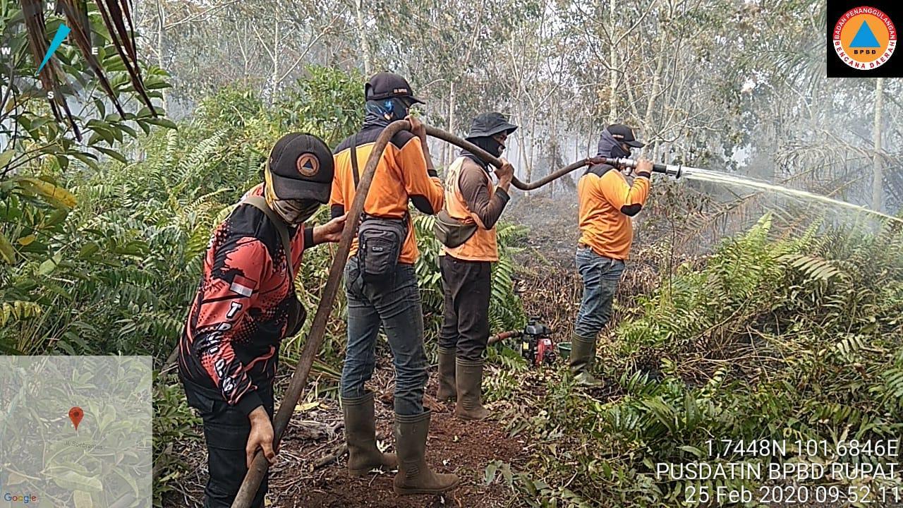 Tim BPBD dalam melakukan pemadaman dan pendinginan lahan